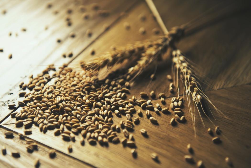 PIZZA 小麦